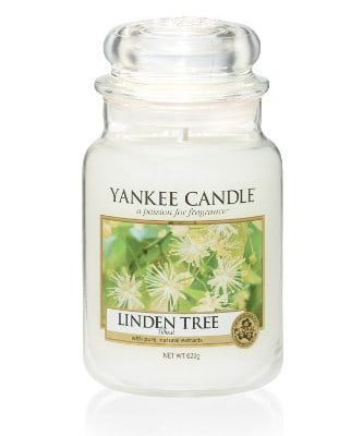 Yankee Candle Classic - Linden Tree
